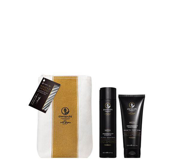 Smoothing Essentials For Ultimate Shine Paul Mitchell Awapuhi Wild Ginger